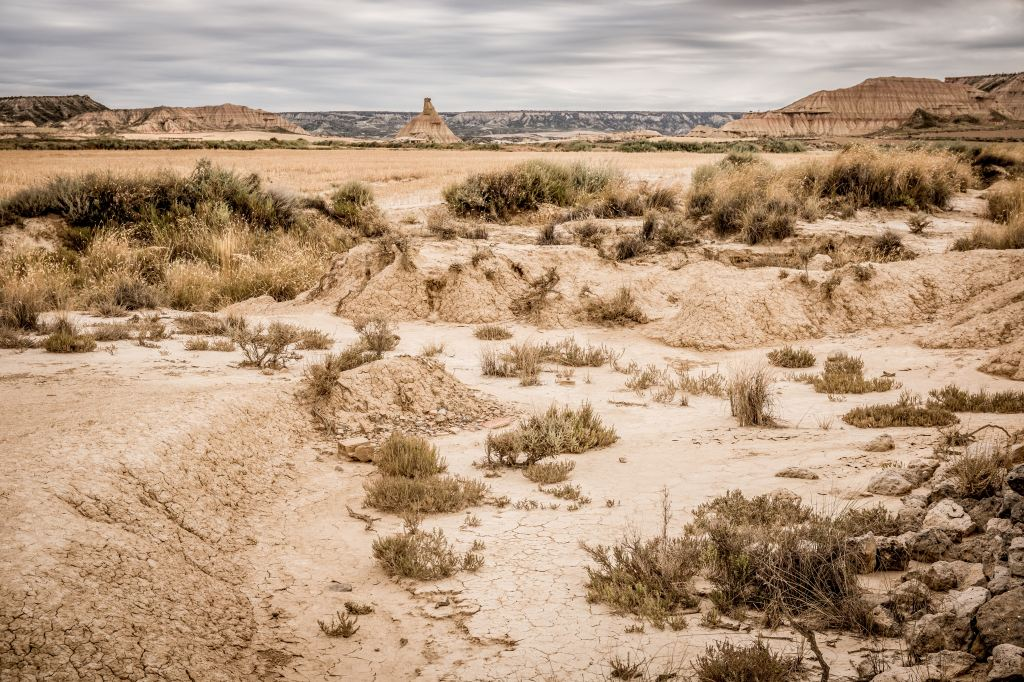 Dryland in Spain by Bernard Hermant