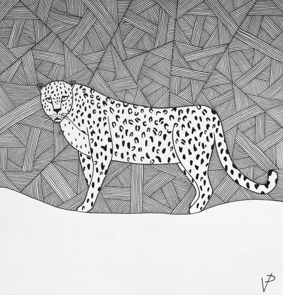 Persian leopard standing illustration