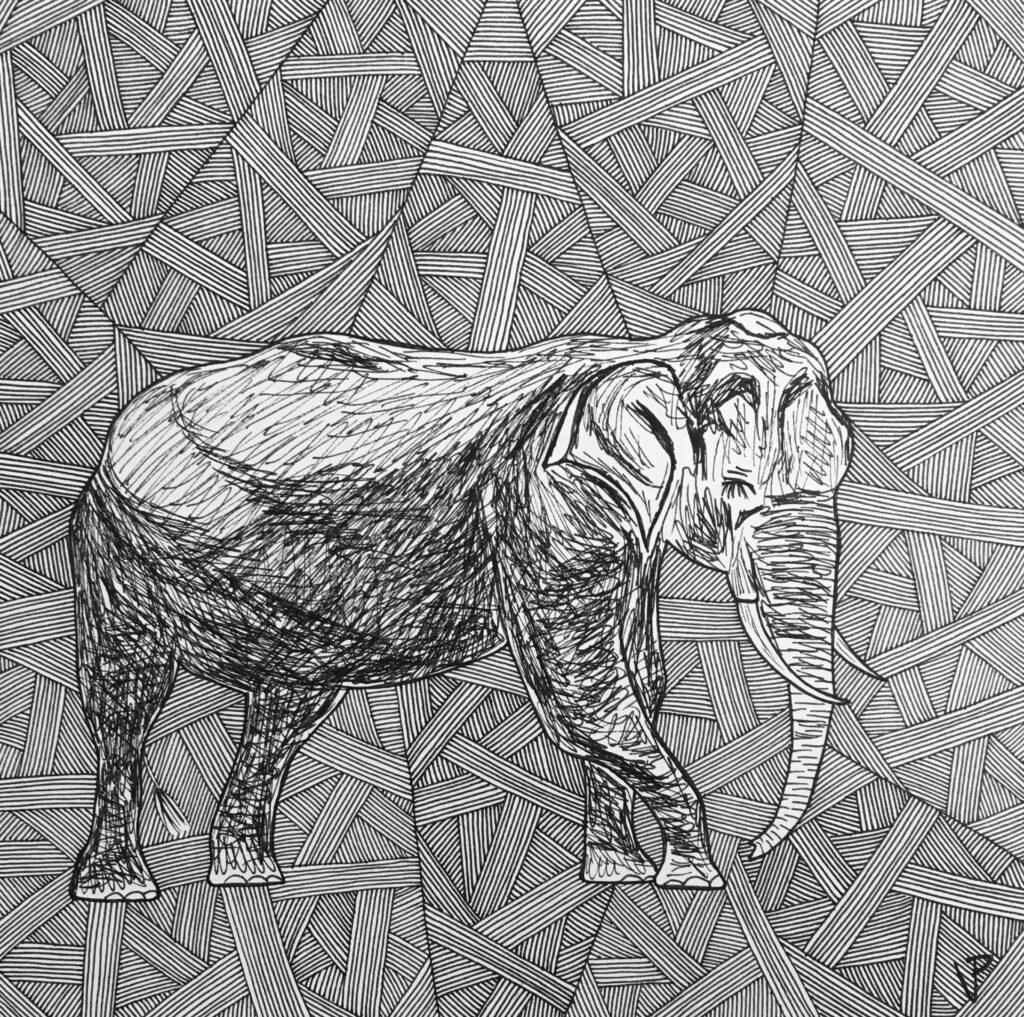 Black and white illustration of elephant