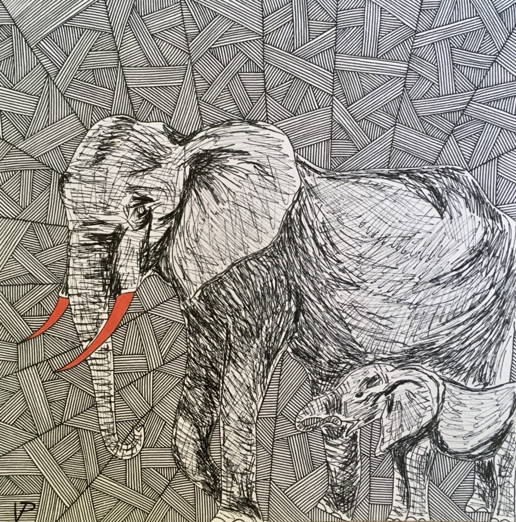 A beautiful elephant valued only for his tusks